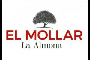 Terrenos Venta Jujuy El Mollar - La Almona